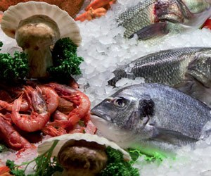 Máy làm đá bảo quản hải sản tươi sống