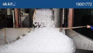 Sản xuất đá viên sạch